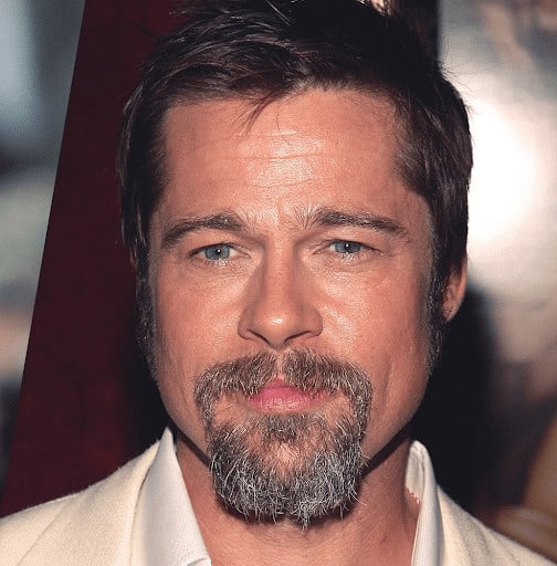 Brad Pitt Square Goatee Style with a little gray mixed in.