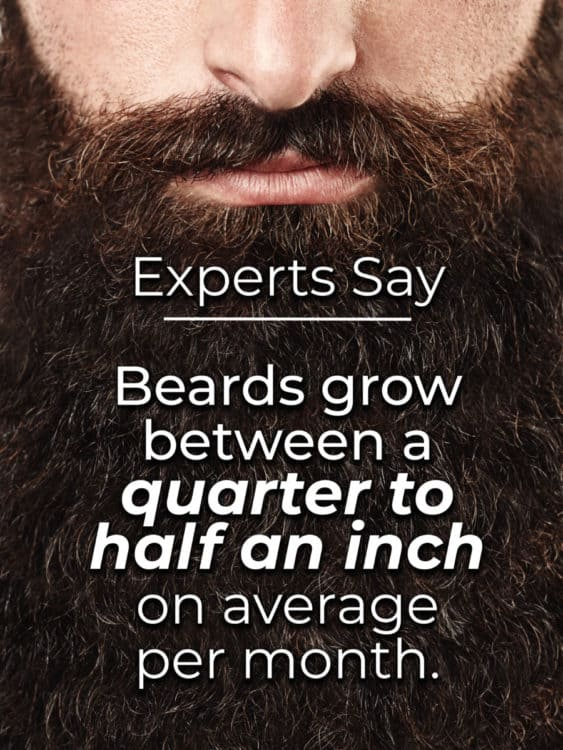 How long does it take to grow a beard? Experts Say - Beards grow between a quarter to half an inch on average per month.