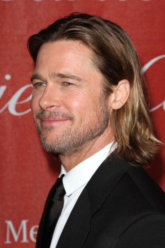Brad Pitt Beard Growth
