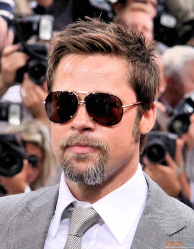 Brad Pitt sunglasses and goatee