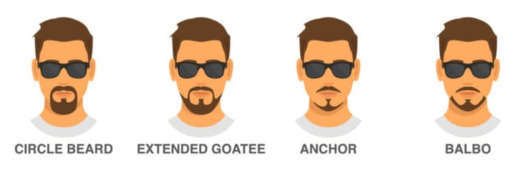Extended beard style guide