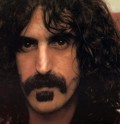 Frank Zappa's Soul Patch and mustache.