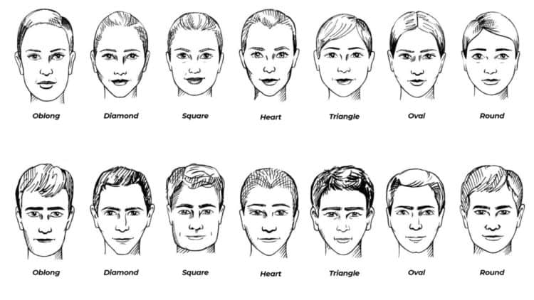 Different head shapes