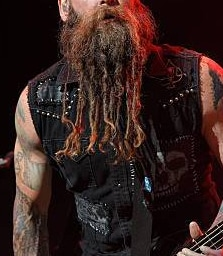 Long beard dreads