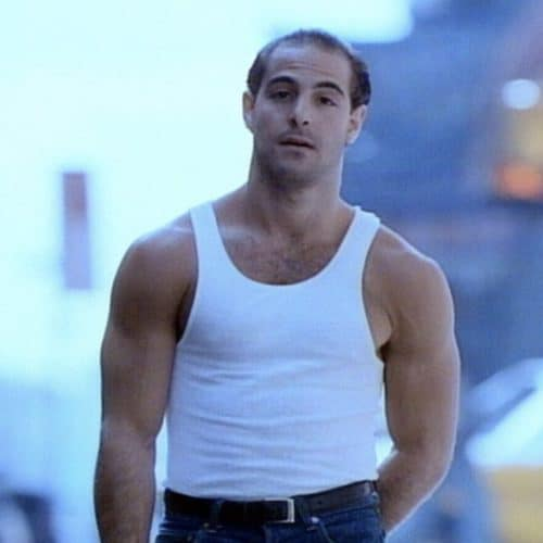 Hot Stanley Tucci with Hair