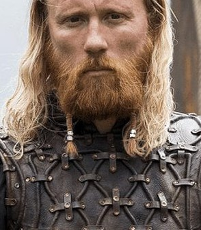 Viking Beard dreads